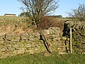 Stone stile in wall below Half Acres - geograph.org.uk - 679181.jpg