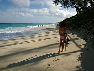 Auch im Januar ist das Meer um die Bahamas noch 24 Grad warm