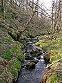 Stream at Gill Hey Bridge, Holme, Holmfirth (3383380954).jpg