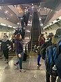 Subway at York University14 11 08 203000.jpeg