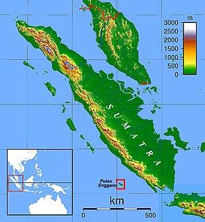 language in Indonesia