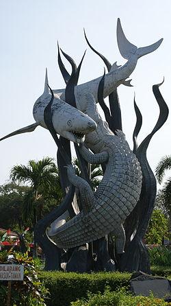 430 Gambar Ikan Hiu Sura Dan Buaya Terbaru