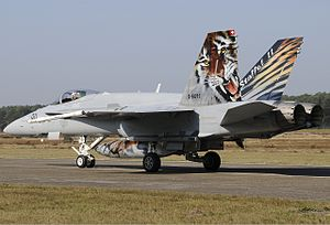 Swiss Air Force Hornet Bidini-2.jpg