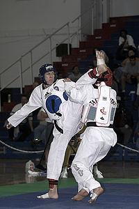 Taekwondo Fight 01.jpg