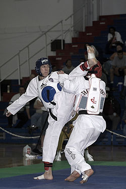 "The image ""http://upload.wikimedia.org/wikipedia/commons/thumb/c/c8/Taekwondo_Fight_01.jpg/250px-Taekwondo_Fight_01.jpg"" cannot be displayed, because it contains errors."