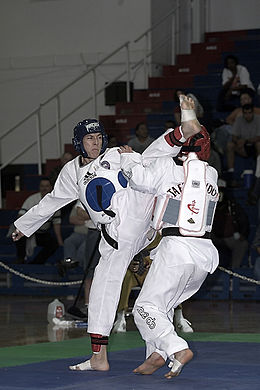 Taekwondo Fight 01