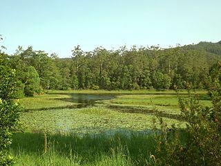 Tallebudgera Valley, Queensland Suburb of Gold Coast, Queensland, Australia
