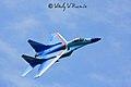 Tambov Airshow 2008 (64-14).jpg