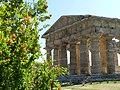 Tempio di Nettuno013.jpg