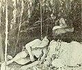 The Adventures of Tarzan (1921) - 1.jpg