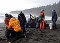 The Coast Guard helps remove trash from a beach near Neah Bay, Wash. 160122-G-KL864-608.jpg