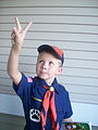 The Cub Scout Sign.jpg