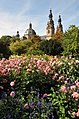 The Garden of Dahlia, Fulda, Germany.jpg