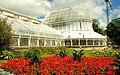 The Palm House, Botanic Gardens, Belfast - geograph.org.uk - 901899.jpg