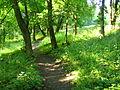 The Pidpisocxne lake - panoramio - Wolodymyr Lavrynenko (1).jpg