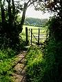 The Ridgeway near Wigginton - geograph.org.uk - 184038.jpg