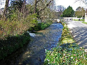 River Wey, Dorset - The Wey at Upwey