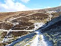 The Southern Upland Way below Stake Hill - geograph.org.uk - 176293.jpg