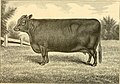 The breeds of live stock, and the principles of heredity (1887) (14594627850).jpg