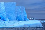 The cruise from Decption to Livingstone Island.more spectacular icebergs. (25895147802).jpg