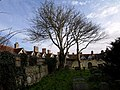 The north side of Rottingdean Churchyard - geograph.org.uk - 1602103.jpg