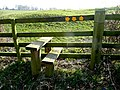 Three-way stile - geograph.org.uk - 1265562.jpg
