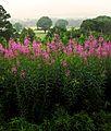 Threlkeld, Lake District. - panoramio.jpg