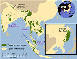 Historical distribution of tigers (pale yellow) and 2006 (green).[೧]