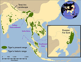 Tiger's historic range in about 1850 (pale yellow) and in 2006 (in green).[6]