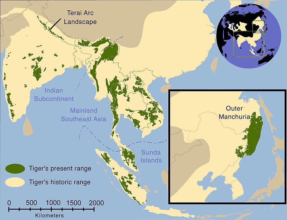 Tiger map