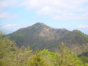 Polhov Gradec Hills - Tošč, the highest peak of the Polhov Gradec Hills