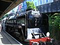 Torbay Express at Kingswear 2.jpg