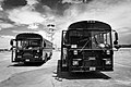 Tour-bus-buses-busses.jpg