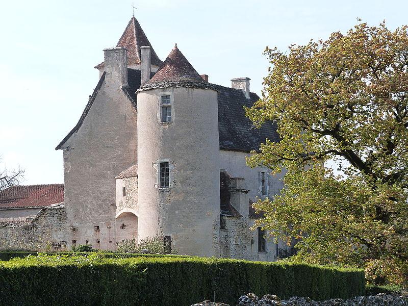 Château de Couanac (Varaire)