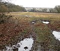 Towards Stope Hill Cottages - geograph.org.uk - 1728221.jpg