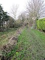 Towpath back - geograph.org.uk - 1639839.jpg