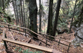 Steep trail with steps and handrails