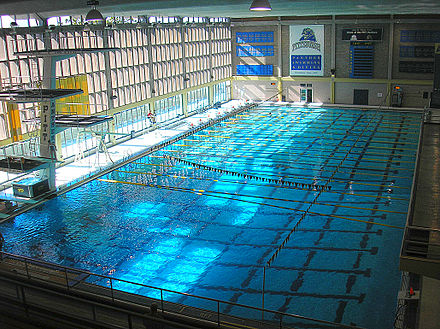 Pitt Swimming and Diving competes in Trees Pool TreesPoolfBalcony1.jpg