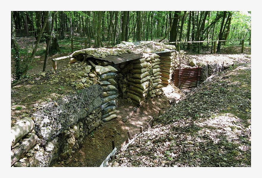 Trench Remnants in Apremont Forest near St Mihiel
