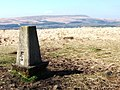 Trig Point on Cheetham Close - geograph.org.uk - 1271920.jpg