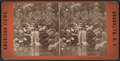 Trout Pond and falls, Prospect Park, from Robert N. Dennis collection of stereoscopic views.png