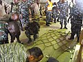 UGANDA ADAPT 2010 (5020098297).jpg