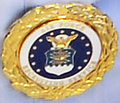 USAF Gold Recruiter Badge.png