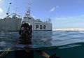 US Navy 110607-N-XD935-195 Navy Diver 1st Class Jimmy Sotelo snorkels on the surface monitoring multinational divers below conducting diving operat.jpg
