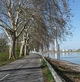 Uferstraße - panoramio - Immanuel Giel.jpg