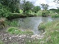 Unnamed Pond - geograph.org.uk - 1449663.jpg