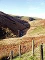 Upper Doethie valley - geograph.org.uk - 81330.jpg