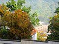 VI. Heidelberg, Blick von der Schlossbergseite auf die Alte Brücke Heidelberg und den Heiligenberg 0171 .JPG