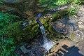 Valdai National Park asv2018-08 img06 Roschino.jpg