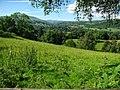 Vale of Grwyney.jpg